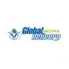 Global Vectra Helicorp Ltd